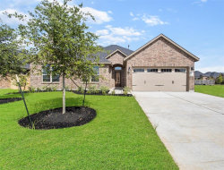 Photo of 507 Yellow Bullhead Court, Rosenberg, TX 77469 (MLS # 45939891)