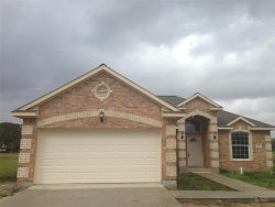 Photo of 216 Mossy Meadows Drive, West Columbia, TX 77486 (MLS # 46315261)