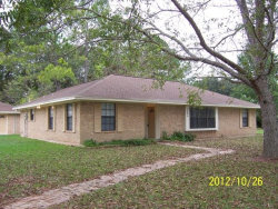 Photo of 1408 County Road 961a, Brazoria, TX 77422 (MLS # 46751205)