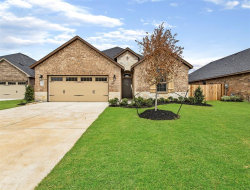 Photo of 515 Yellow Bullhead Court, Rosenberg, TX 77469 (MLS # 46888309)