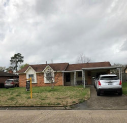 Photo of 719 Brookview Street, Channelview, TX 77530 (MLS # 47585896)