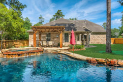 Photo of 14 Birchwood Park Place, The Woodlands, TX 77382 (MLS # 47948732)