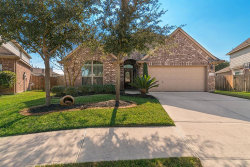 Photo of 13502 Misty Shadow Lane, Pearland, TX 77584 (MLS # 48434201)