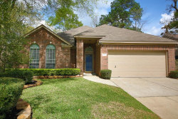 Photo of 24 Barn Lantern Place, The Woodlands, TX 77382 (MLS # 48701510)
