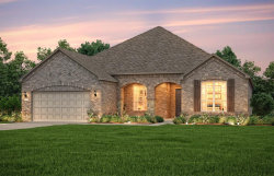 Photo of 216 Fox Trotter, The Woodlands, TX 77382 (MLS # 49621831)