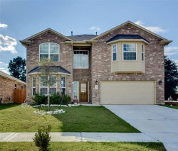 Photo of 20227 Ray Falls Drive E, Tomball, TX 77375 (MLS # 53212377)