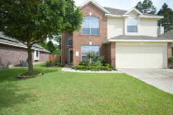 Photo of 8223 Cove Timbers Lane, Tomball, TX 77375 (MLS # 54818073)
