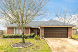 Photo of 3009 LONDON Court, Pearland, TX 77581 (MLS # 56139914)