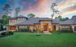 Photo of 7702 Morgans Pond Court, Spring, TX 77389 (MLS # 56253258)