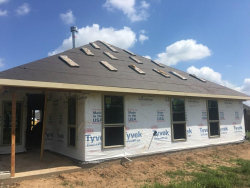 Photo of 9710 Highland Pointe Drive, Needville, TX 77461 (MLS # 56348134)