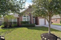 Photo of 14008 Ginger Cove Court, Pearland, TX 77584 (MLS # 57086994)