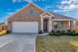 Photo of 3827 Willow Breeze Circle, Needville, TX 77461 (MLS # 57123435)