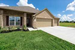 Photo of 306 Freeman Boulevard, West Columbia, TX 77486 (MLS # 5718195)