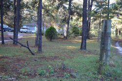 Photo of 503 County Road 3300, Colmesneil, TX 75938 (MLS # 57410245)