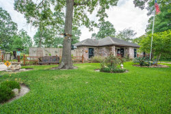 Photo of 819 Poppets Way, Crosby, TX 77532 (MLS # 5753796)