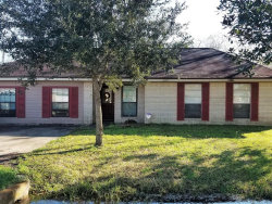 Photo of 2631 County Road 769a, Brazoria, TX 77422 (MLS # 58562082)