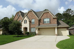 Photo of 16995 Crampton Lane, Spring, TX 77379 (MLS # 58698624)