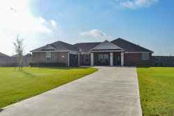 Photo of 11215 Aaron Way, Needville, TX 77461 (MLS # 5902369)