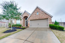 Photo of 12312 Harmony Hall Court, Pearland, TX 77584 (MLS # 61509883)