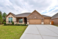 Photo of 7569 Tyler Run Boulevard, Conroe, TX 77304 (MLS # 61820971)