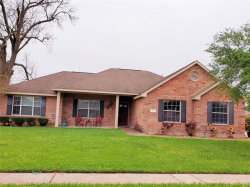 Photo of 213 Milo Street, Dayton, TX 77535 (MLS # 62258629)