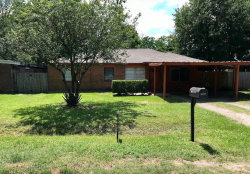 Photo of 1007 Meads Street, Channelview, TX 77530 (MLS # 62875194)