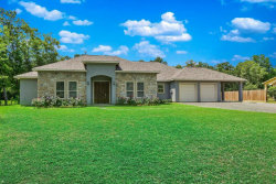 Photo of 14191 Strausie Lane, Conroe, TX 77302 (MLS # 6394101)