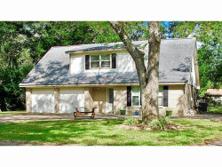 Photo of 101 Gladiola St Street, Lake Jackson, TX 77566 (MLS # 64210339)