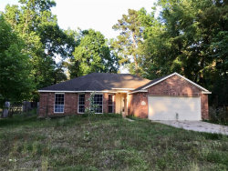 Photo of 24422 Pine Canyon Drive, Spring, TX 77380 (MLS # 64623384)