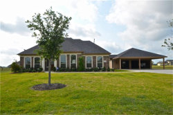 Photo of 10619 Lake Travis Drive, Needville, TX 77461 (MLS # 64974817)