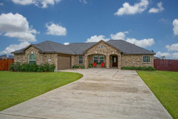 Photo of 11115 Emily Ruth Drive, Needville, TX 77461 (MLS # 67303580)