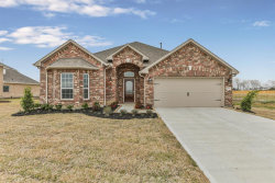 Photo of 15011 Icet Creek Ave, Mont Belvieu, TX 77523 (MLS # 67505571)