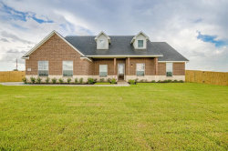 Photo of 10219 Filly Drive, Needville, TX 77461 (MLS # 67805813)