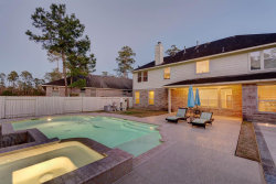 Photo of 46 Prosewood Drive, The Woodlands, TX 77381 (MLS # 68969556)