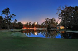 Photo of 18 N Timber Top Drive, The Woodlands, TX 77380 (MLS # 69397558)