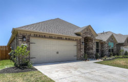 Photo of 28011 Middlewater View Lane, Katy, TX 77494 (MLS # 6949714)