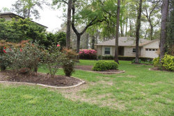Photo of 9 Oldstream Court, The Woodlands, TX 77381 (MLS # 69754074)