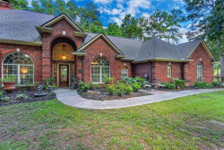 Photo of 29202 Commons Forest Drive, Huffman, TX 77336 (MLS # 69762336)