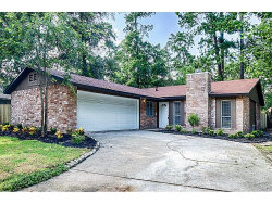 Photo of 4 Sandlily Court, The Woodlands, TX 77380 (MLS # 69996409)