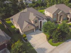 Photo of 38 Langstone Place, Spring, TX 77389 (MLS # 70779653)
