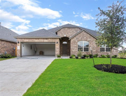 Photo of 506 Yellow Bullhead Court, Rosenberg, TX 77469 (MLS # 71465872)