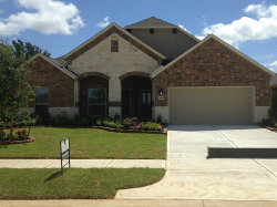 Photo of 21810 Soncy Way, Tomball, TX 77377 (MLS # 71519890)
