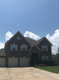 Photo of 8623 Briar Oaks Lane, Baytown, TX 77523 (MLS # 71825054)
