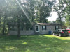 Photo of 251 Canary St, Point Blank, TX 77364 (MLS # 72716887)