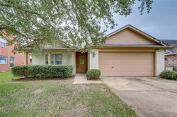 Photo of 3807 Candlewood Circle, Needville, TX 77461 (MLS # 7304619)