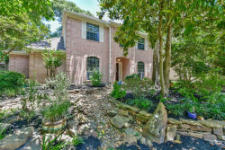 Photo of 14 Cinnamon Teal Place, The Woodlands, TX 77382 (MLS # 75160289)