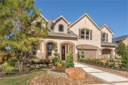Photo of 226 Lagarto Court, Pinehurst, TX 77362 (MLS # 75194860)