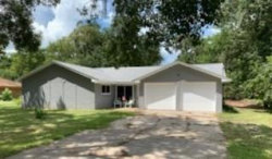 Photo of 1310 County Road 687, Angleton, TX 77515 (MLS # 75251473)
