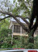 Photo of 2424 Park Street, Houston, TX 77019 (MLS # 76822395)