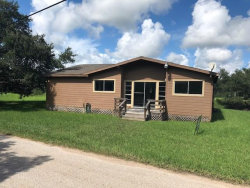 Photo of 4533 County Road 306A, Brazoria, TX 77422 (MLS # 78172991)